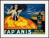 Fap'Anis