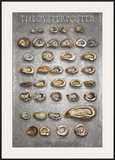 The Oyster Poster