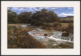 Comal Creek