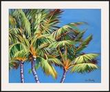 3 Crazy Palms
