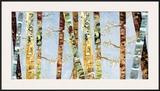 Bark Abstract