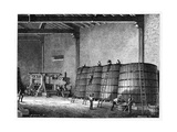 Wine Production  19th Century