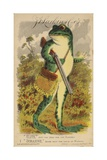 Frog with Shotgun and Satchel