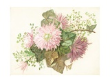 Pink Flowers (Dahlia)  Card