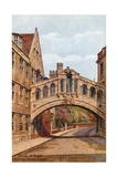 Bridge of Sighs  Hertford College  Oxford