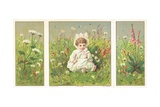 Young Child Sitting in Flower Meadow  Christmas Card