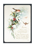 Robins with Holly and Snowdrops  Christmas Card