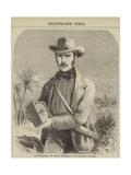 Dr Livingstone