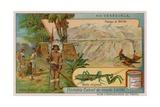 Plateau of Mirida with Hummingbird and Praying Mantis and Wayu Indians