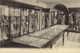 The Figure Room  Horniman Museum  Forest Hill  London