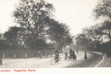 Cyclists in Regent's Park