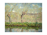 Spring  the Border of L'Epte; Printemps  Bord De L'Epte  1885