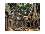 Ta Prohm  Angkor  Cambodialate 12th to 13th Century
