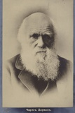 Charles Darwin (1809-1882)  English Naturalist