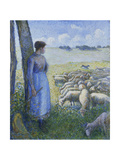 Shepherdess and Sheep; Bergere Et Moutons  1887