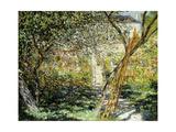 A Garden in Vetheuil; Le Jardin De Vetheuil  1881