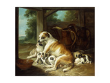 A Mother with Her Puppies  1734