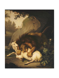 A Lion Attacking a Goat  1785