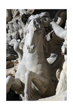 Italy Rome Fontana Di Trevi 18th Century Sea Horse