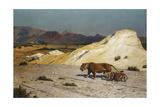 Lioness and Cubs; Lionne Et Lioceaux