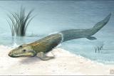 Tiktaalik Prehistoric Fish  Artwork