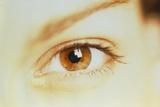 Woman's Healthy Brown Eye