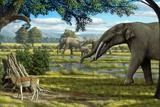 Wildlife of the Miocene Era  Artwork