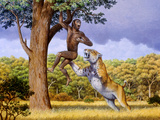 Scimitar Cat Attacking a Hominid