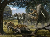 Mammoths And Sabre-tooth Cats  Artwork