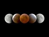 Total Lunar Eclipse  Montage Image