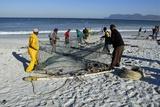 Trek Net Fishing