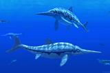 Ichthyosaur Marine Reptiles