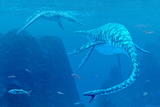 Elasmosaurus Marine Reptiles