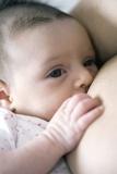 Six Week Old Baby Girl Breastfeeding