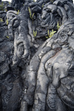 Cooled Pahoehoe Lava