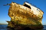 Rusting Shipwreck At Low Tide