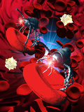 Medical Nanorobots on Red Blood Cell