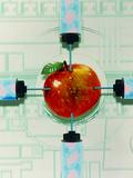Conceptual Image of Genetically-engineered Apple