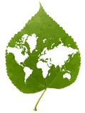 Environmentally Friendly Planet  Artwork