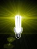 Bright Idea  Conceptual Artwork