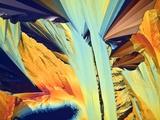 Paracetamol Crystals  Light Micrograph