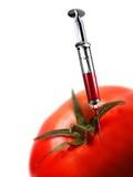 Genetically-engineered Tomato  Artwork