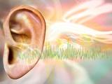 Tinnitus  Conceptual Artwork
