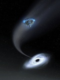 Black Hole Research