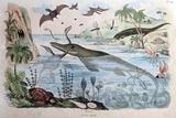 1834 Guerin Engraving 'Extinct Animals