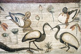 Nile Flora And Fauna  Roman Mosaic