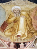 Averroes  Islamic Physician