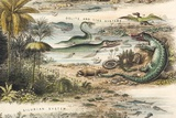 1849 the Antidiluvian World Crop Jurassic
