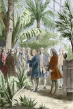 Linnaeus And De Jussieu  Botanists