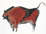 Cave Painting of a Bison  Artwork